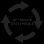 SYSTEMIE – FORMEE A L'INTER VENTION SYSTEMIQUE DANS L'ENTREPRISE - NIVEAU I